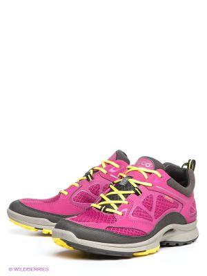 Спортивные ботинки ECCO. Цвет: фуксия, темно-серый