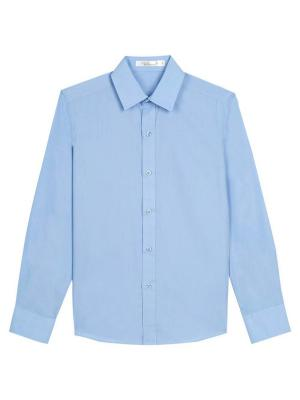 Рубашки Vitacci. Цвет: голубой