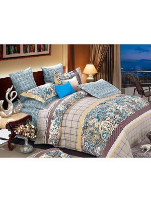 Постельное белье Ajwain Семейный Amore Mio. Цвет: голубой, коричневый