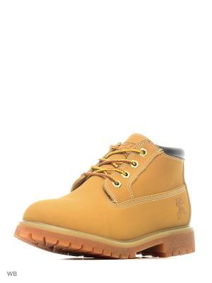 Ботинки CALIFORNIA Ascot. Цвет: рыжий
