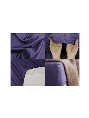 Простыня на резинке Хлопковый Край. Цвет: синий