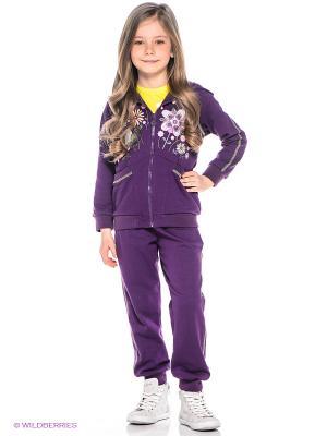 Спортивный костюм Oldos. Цвет: фиолетовый