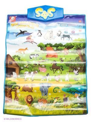Обучающий плакат Животные S-S. Цвет: зеленый