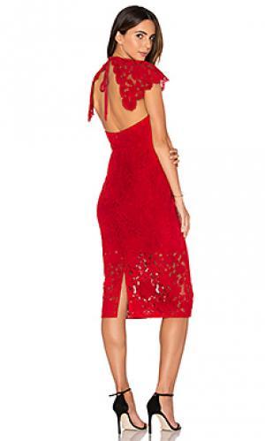 Платье миди affinity Lover. Цвет: красный