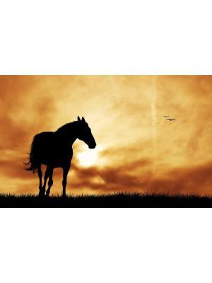 Картина лошадь Ecoramka. Цвет: черный, светло-коричневый, светло-оранжевый