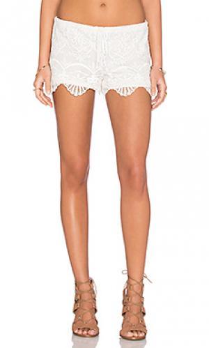 Кружевные шорты seashell Nightcap. Цвет: белый