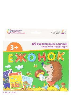 Набор занимательных карточек для дошколят. Ежонок АЙРИС-пресс. Цвет: зеленый
