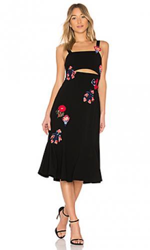 Платье с вырезами olivia Tanya Taylor. Цвет: черный