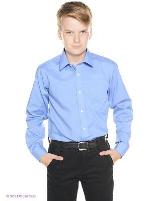 Рубашка SILVER SPOON. Цвет: синий, голубой