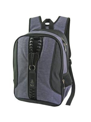 Портфель ученический Stelz. Цвет: серый