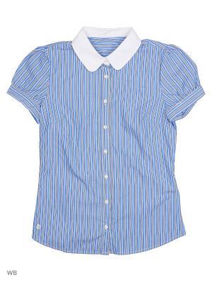 Рубашка-блузка ВАЛЕНТИНА СТИЛЬ. Цвет: голубой