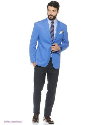 Пиджак Sarto Reale. Цвет: голубой