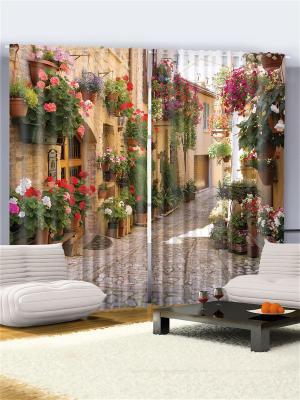 Комплект фотоштор для гостиной Улица с цветочными горшками, плотность ткани 175 г/кв.м, 290*265 см Magic Lady. Цвет: бежевый, белый, зеленый, красный, розовый