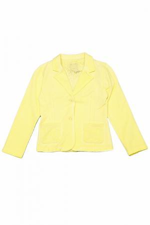 Пиджак Silvian Heach. Цвет: желтый
