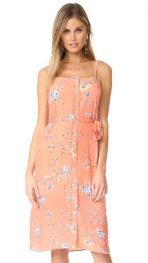 Платье Flower Frolicking Ali & Jay. Цвет: песочный цветочный рисунок