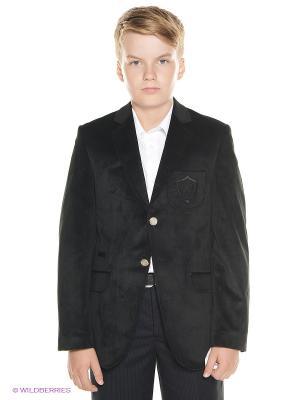 Пиджак Cascatto. Цвет: черный