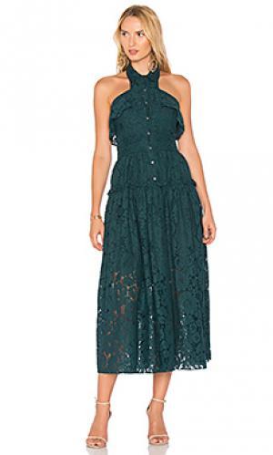 Кружевное платье elias bloom Marissa Webb. Цвет: синий