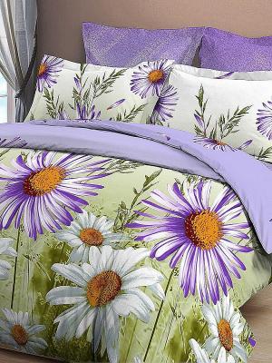 Комплект постельного белья на резинке Letto. Цвет: сиреневый, зеленый