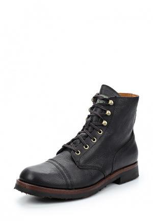 Ботинки Polo Ralph Lauren. Цвет: коричневый
