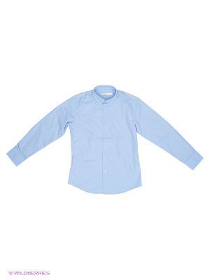 Сорочка Vitacci. Цвет: голубой