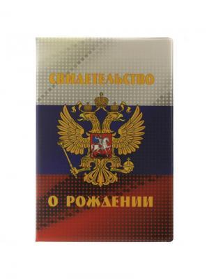 Папка для свидетельства о рождении флаг РФ Tina Bolotina. Цвет: синий, красный, белый