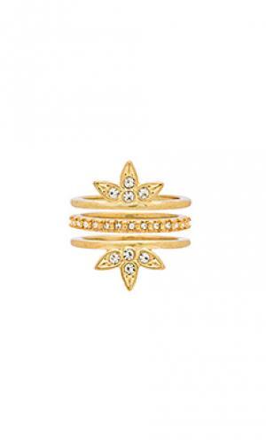 Набор инкрустированных колец posie Luv AJ. Цвет: металлический золотой