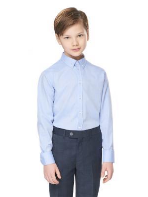 Рубашка Junior Republic. Цвет: голубой