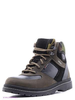 Ботинки Зебра. Цвет: зеленый