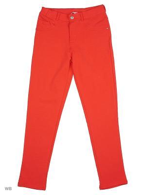 Трикотажные брюки Modis. Цвет: красный