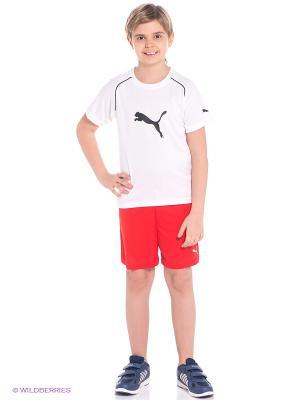 Шорты Velize Shorts Puma. Цвет: красный