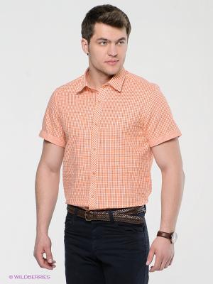 Рубашка MONDIGO. Цвет: оранжевый