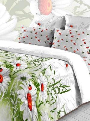 Комплект постельного белья из бязи 1,5 спальный Василиса. Цвет: белый, зеленый