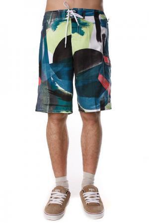Пляжные мужские шорты  Painterra Boardie Blue Ezekiel. Цвет: зеленый