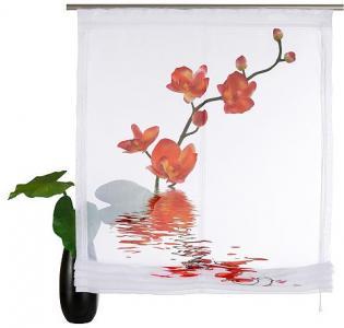 Римская штора, Home wohnideen, «Orchidee» (комплект из 1 шт.) WOHNIDEEN. Цвет: оранжевый