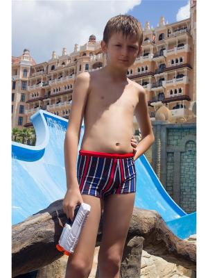 Плавки-шорты Dea Fiori. Цвет: красный, синий