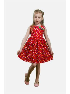 Платье Горох L&K