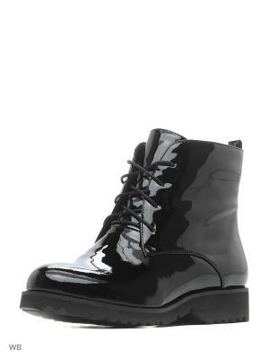 Ботинки EVITA. Цвет: черный