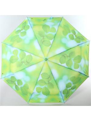 Зонт Magic Rain. Цвет: зеленый, светло-зеленый