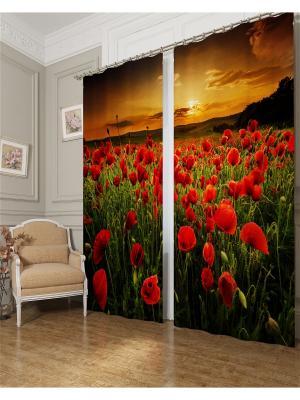 Фотошторы Природа на закате, Блэкаут Сирень. Цвет: красный, зеленый, коричневый, оранжевый, черный