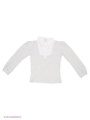 Блузка DAMY-M. Цвет: светло-серый
