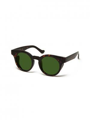 Очки солнцезащитные RY 583S 02 Replay. Цвет: коричневый