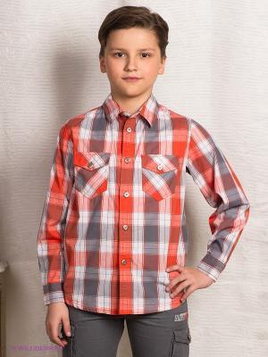 Рубашка S`Cool. Цвет: серый, терракотовый