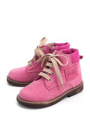 Ботинки PAVLE. Цвет: фуксия