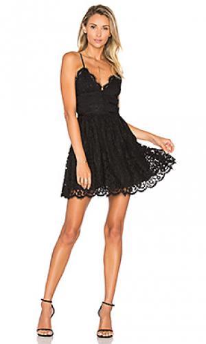 Платье give it up NBD. Цвет: черный