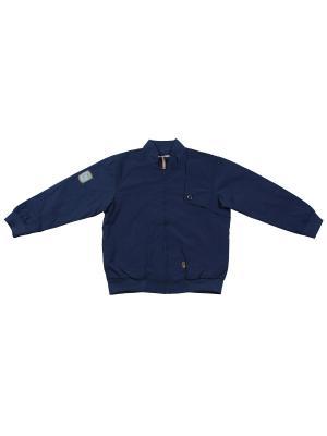 Куртка ВЕНЕЙЯ. Цвет: синий