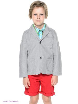Пиджак CHICCO. Цвет: серый