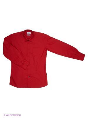 Рубашка Cascatto. Цвет: красный