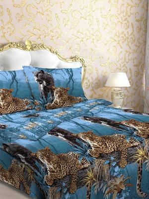 Комплект постельного белья Letto. Цвет: синий