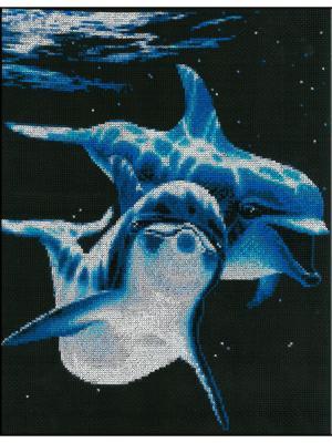 Дельфины набор для вышивания 30х35,5 см NITEX. Цвет: черный, белый, синий