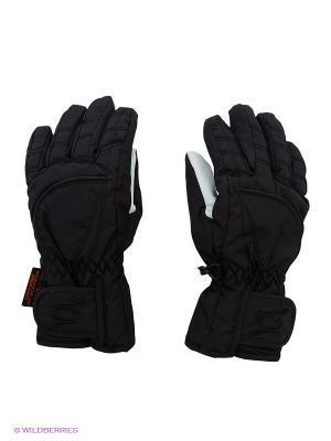 Перчатки CACAO. Цвет: черный, серый